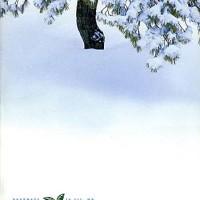 Wintergreen: 2001 Catalog