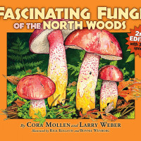 "Kollath+Stensaas: ""Fascinating Fungi of the Northwoods"""