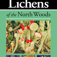 "Kollath+Stensaas: ""Lichens of the North Woods Cover"""