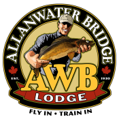 Alanwater Bridge Lodge logo