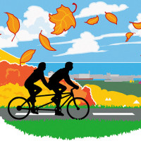 Fall Hillside Bikes