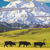Mountain Postcard: Denali