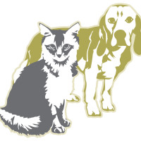 Cat and Dog for Animal Allies