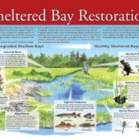 St. Louis River Interpretive Panel: Restoration